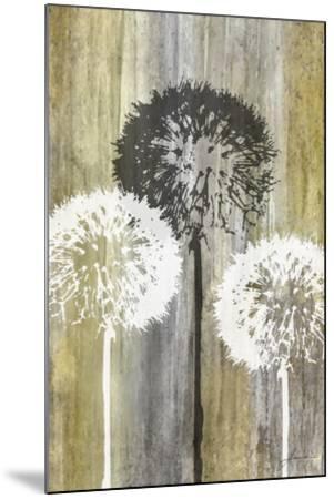 Rustic Garden II-James Burghardt-Mounted Art Print