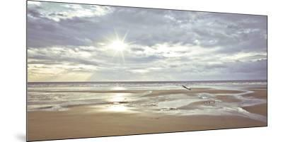 Seascape-A^ Franke-Mounted Art Print