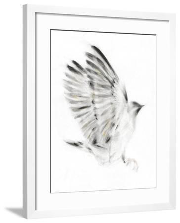 Alight-Kellas Campbell-Framed Giclee Print