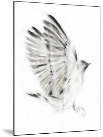 Alight-Kellas Campbell-Mounted Giclee Print