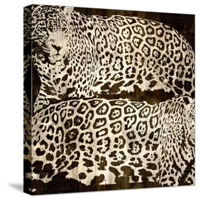 Leopards-Darren Davison-Stretched Canvas Print