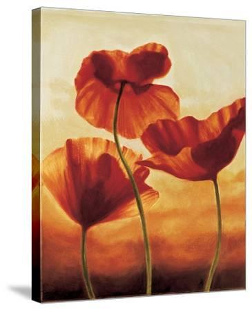 Poppies in Sunlight II-Andrea Kahn-Stretched Canvas Print