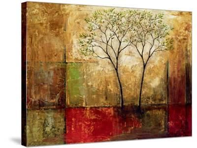Morning Luster II-Mike Klung-Stretched Canvas Print