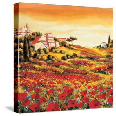 Valley of Poppies-Richard Leblanc-Stretched Canvas Print