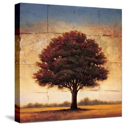 Splendor I-Gregory Williams-Stretched Canvas Print