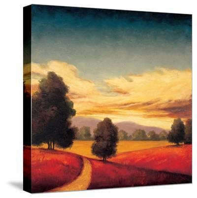 Forever II-Gregory Williams-Stretched Canvas Print