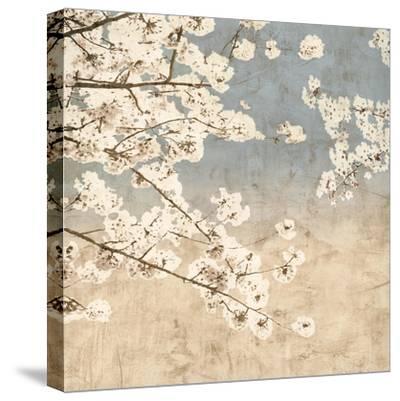 Cherry Blossoms II-John Seba-Stretched Canvas Print