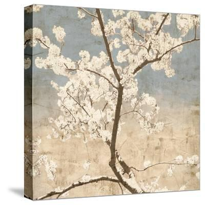 Cherry Blossoms I-John Seba-Stretched Canvas Print