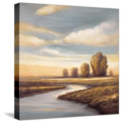 Reminisce II-Jeffrey Leonard-Stretched Canvas Print