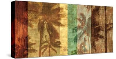 Palm Shadows II-John Seba-Stretched Canvas Print