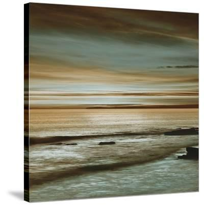 Hightide-John Seba-Stretched Canvas Print