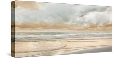Ocean Tide-John Seba-Stretched Canvas Print