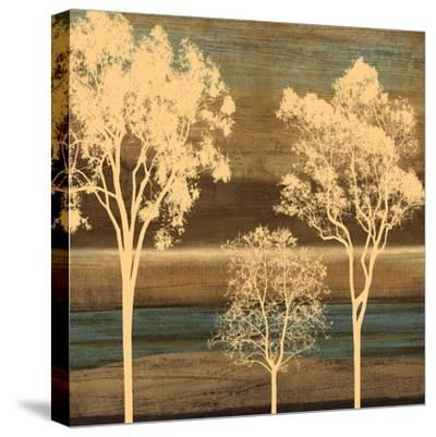 Ambiance II-Chris Donovan-Stretched Canvas Print