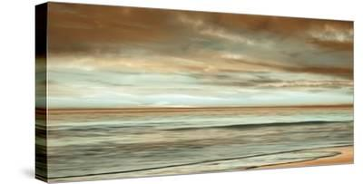 The Surf-John Seba-Stretched Canvas Print
