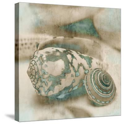 Coastal Gems I-John Seba-Stretched Canvas Print