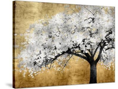 Silver Blossoms-Kate Bennett-Stretched Canvas Print