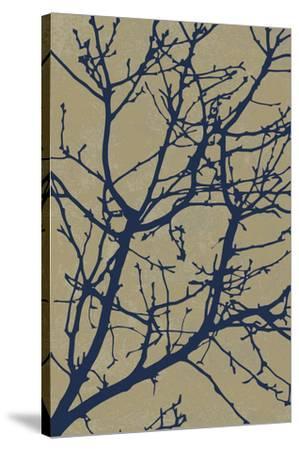 Natural Elements I-Maria Mendez-Stretched Canvas Print