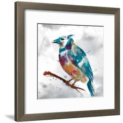 Blue Jay-Stephane Fontaine-Framed Giclee Print