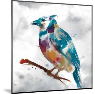 Blue Jay-Stephane Fontaine-Mounted Giclee Print