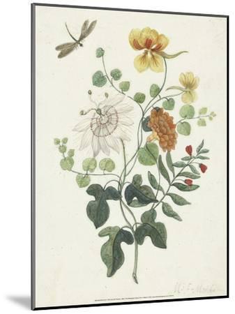 Still Life with Flowers, 1662-Machtelt Moninckx-Mounted Art Print