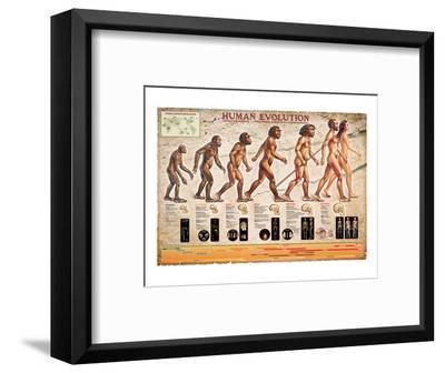Human Evolution--Framed Art Print