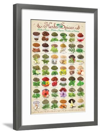 Herbs & Spices--Framed Art Print