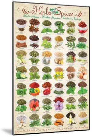 Herbs & Spices--Mounted Art Print