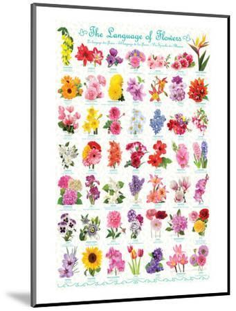 Language of Flowers--Mounted Art Print