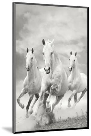 The Three Graces--Mounted Art Print
