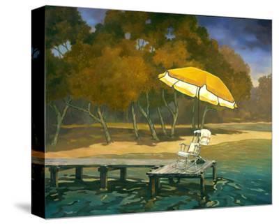 Evening Swim II--Stretched Canvas Print