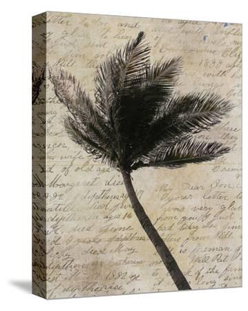 Palm Silhouette--Stretched Canvas Print