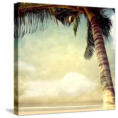 Hawaiian Memories I--Stretched Canvas Print