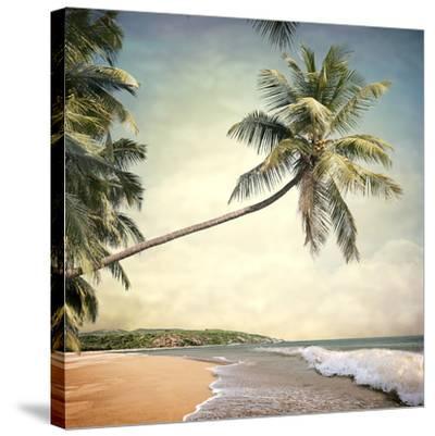 Hawaiian Memories VI--Stretched Canvas Print
