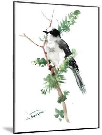 Gray Jay-Suren Nersisyan-Mounted Art Print