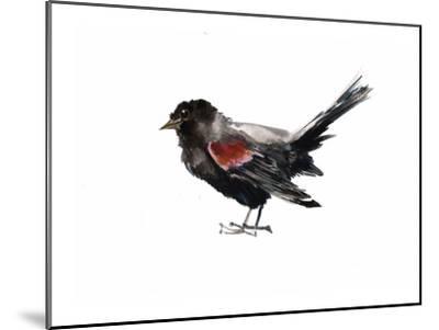 Red Winged Blackbird-Suren Nersisyan-Mounted Art Print