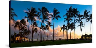 Hawaii Dreaming III--Stretched Canvas Print