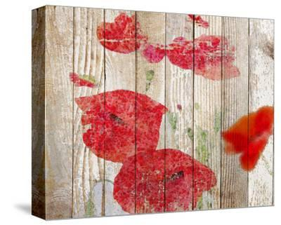 Misty Poppy--Stretched Canvas Print