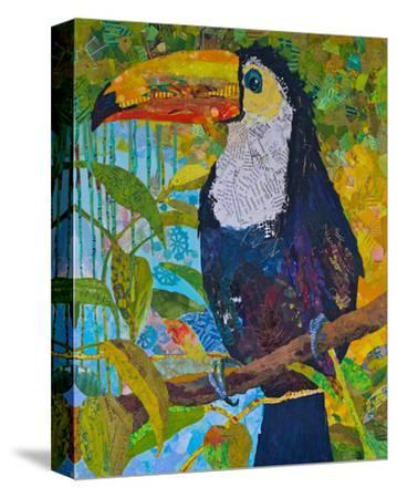 Toucan #1--Stretched Canvas Print