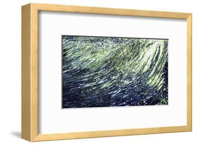 Waterfall, St. Marks River, Florida-Margaret Juul-Framed Giclee Print