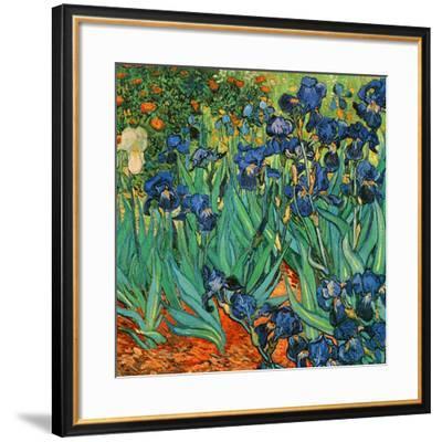 Iris (Détail)-Vincent van Gogh-Framed Art Print