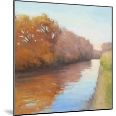 Creekside Stroll-David Skinner-Mounted Giclee Print