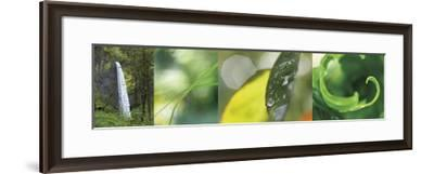 The Forest 1-Florence Delva-Framed Giclee Print