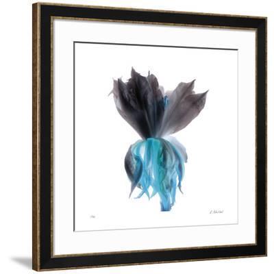 Night Bloom 2-Kate Blacklock-Framed Giclee Print
