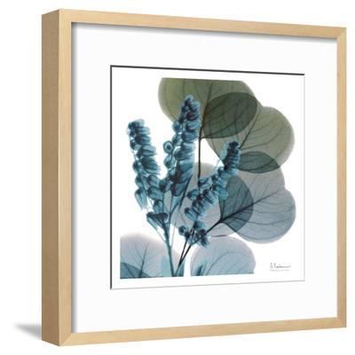 Lilly Of Eucalyptus-Albert Koetsier-Framed Art Print