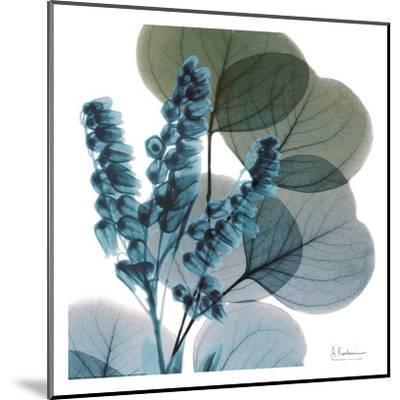 Lilly Of Eucalyptus-Albert Koetsier-Mounted Art Print