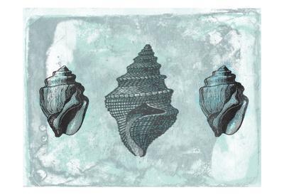 Ocean Beauty 2-Sheldon Lewis-Framed Art Print