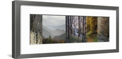 In Awe of Autumn I-Mary Karla-Framed Giclee Print