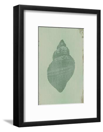 Salt of the Sea II-Ken Hurd-Framed Art Print