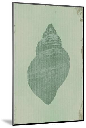 Salt of the Sea II-Ken Hurd-Mounted Art Print