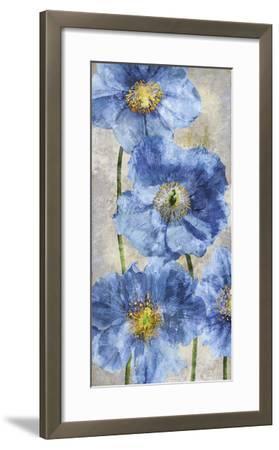 Poppy Splendour II-Tania Bello-Framed Giclee Print